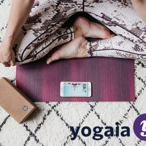 HIT1MILLION-Yogaia Interactive Yoga Classes: Lifetime Subscription for $299