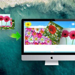 HIT1MILLION-1stFlip Flip Book Creator Pro for Mac: Lifetime License for $29