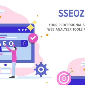 HIT1MILLION-SSEOZI: Your Professional SEO & Web Analyzer Tools with Lifetime Access for $25