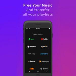 HIT1MILLION-FreeYourMusic Premium Plan: Lifetime Subscription for $39
