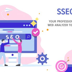 HIT1MILLION-SSEOZI: Your Professional SEO & Web Analyzer Tools with Lifetime Access – only $25!