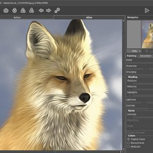 HIT1MILLION-Akvis AirBrush Photo to Painting Software: Lifetime License for $58